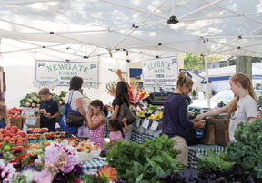 Rye shoppers look for fresh fruits and vegetables from Newgate Farms.